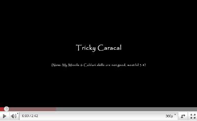 trcaracal